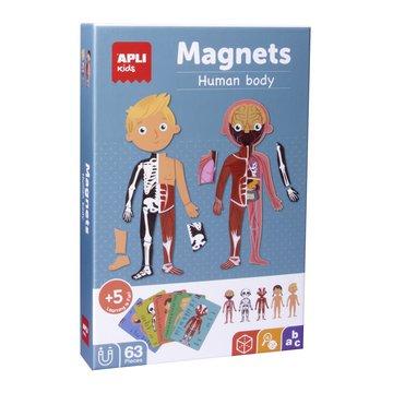 Magnetyczna układanka Apli Kids - Ciało człowieka