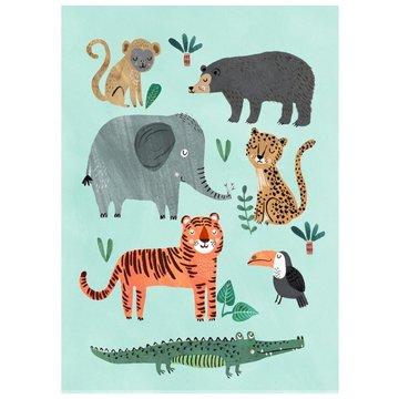 Petit Monkey - Poster Wild Animals 70 x 50 cm
