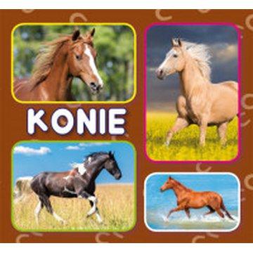 Literat - Harmonijka mała. Konie