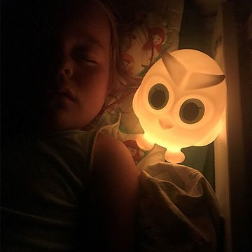 Flow Amsterdam - Przenośna Lampka Ścienna LED, Sowa Oscar